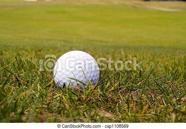 golfball - csp1108569