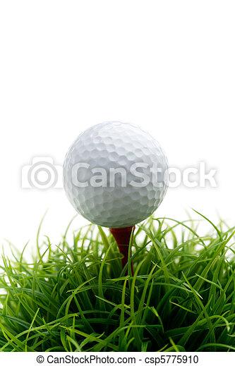 Golfball - csp5775910