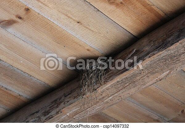 El nido de golondrina en la habitación - csp14097332
