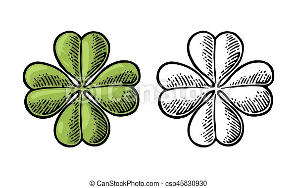 Good Luck Four Leaf Clover Vintage Vector Engraving Illustration