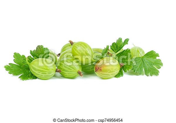 Gooseberries isolated on white background - csp74956454