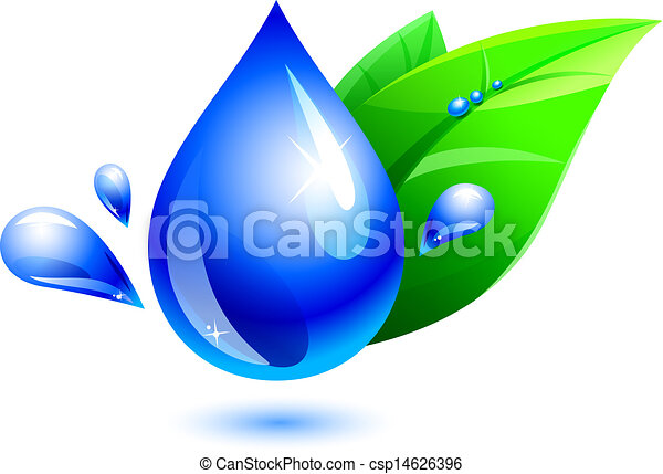 La gota de agua y la hoja - csp14626396