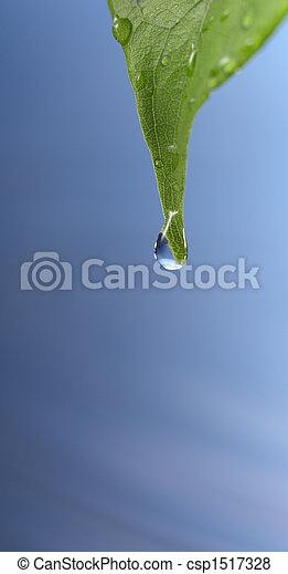 gota agua - csp1517328