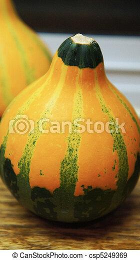 Gourd - csp5249369