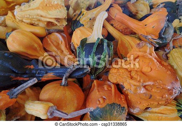 Gourds - csp31338865
