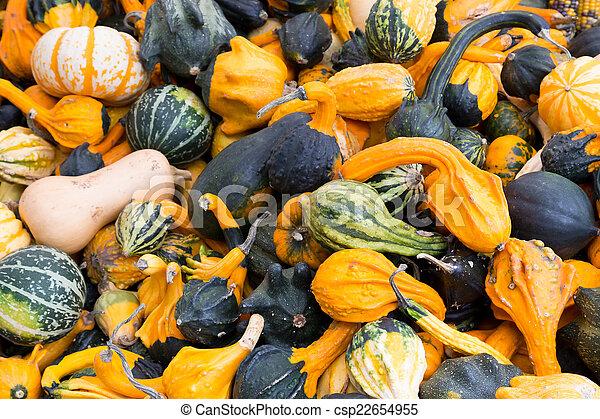 Gourds - csp22654955