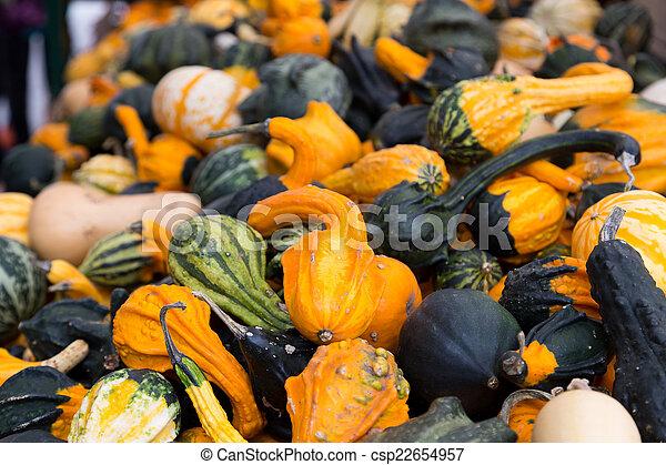 Gourds - csp22654957
