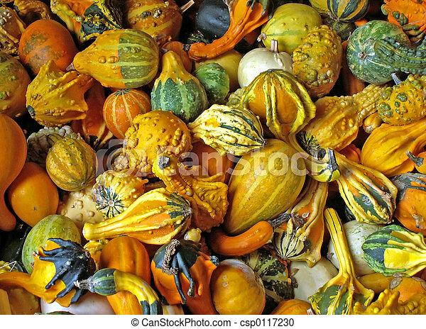 gourds - csp0117230