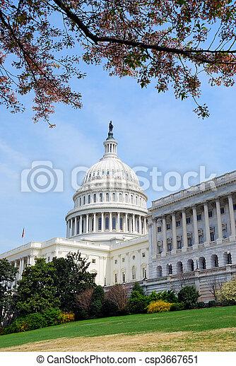 gouvernement, washington, bâtiment, dc - csp3667651