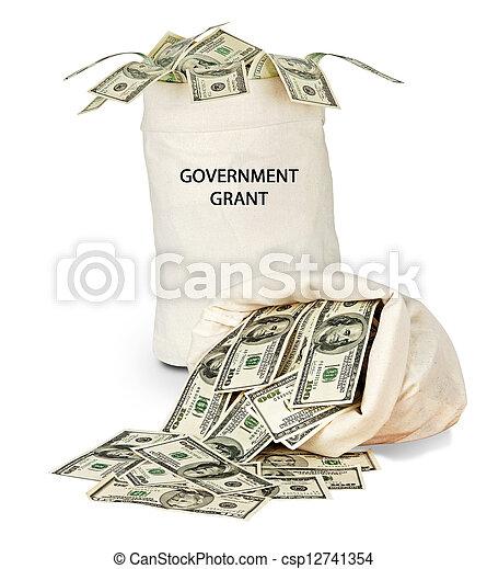 Government grant - csp12741354