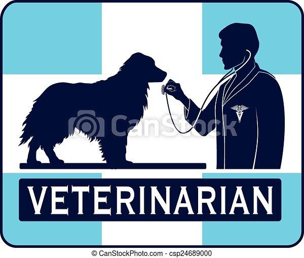 Veterinario con gráfico de perros - csp24689000