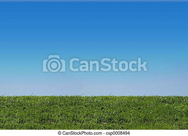 gräs, sky - csp0008494