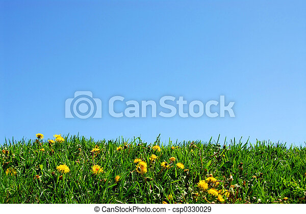 græs, himmel, baggrund - csp0330029