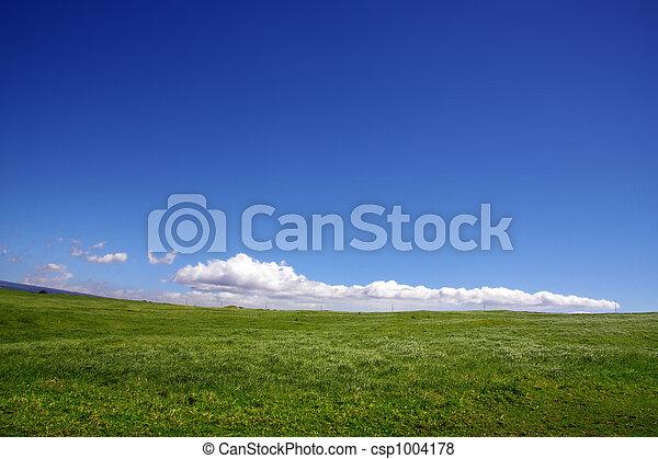 græs, himmel - csp1004178