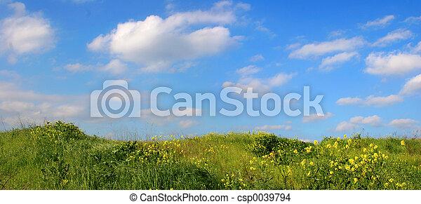 græs, himmel - csp0039794