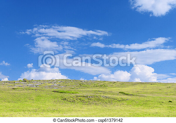 græs, himmel - csp61379142