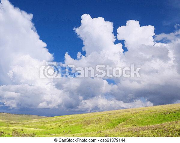 græs, himmel - csp61379144
