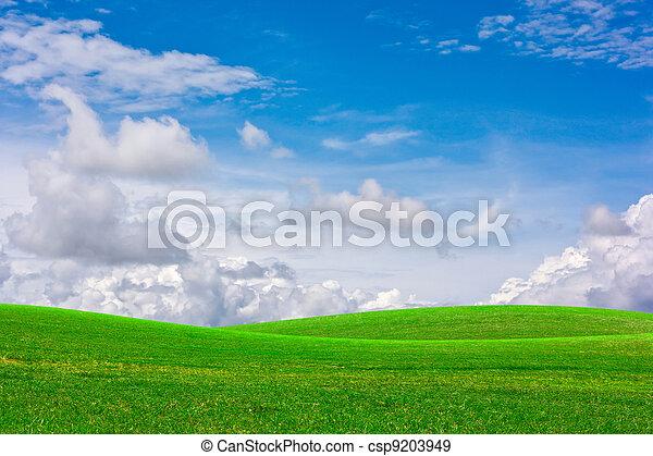 græs, sky. - csp9203949