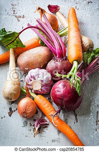grönsaken, rot - csp20854785