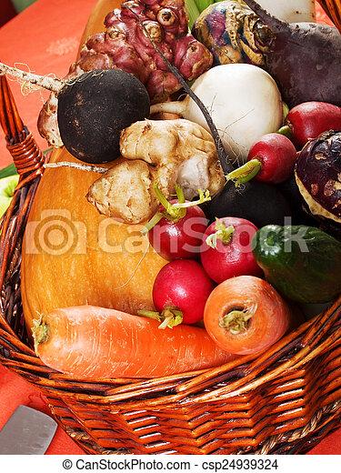 grönsaken, rot - csp24939324