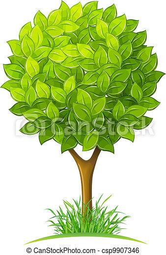 grönt lämnar, träd - csp9907346
