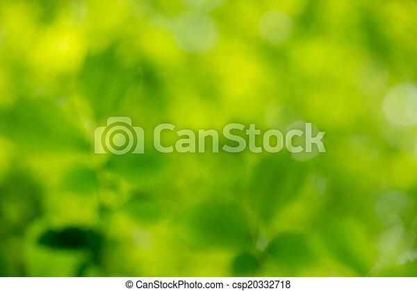 grüner hintergrund - csp20332718