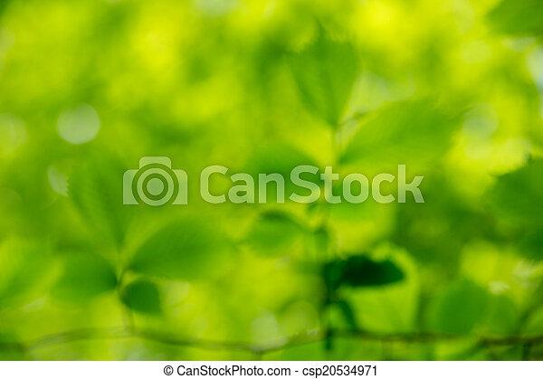 grüner hintergrund - csp20534971
