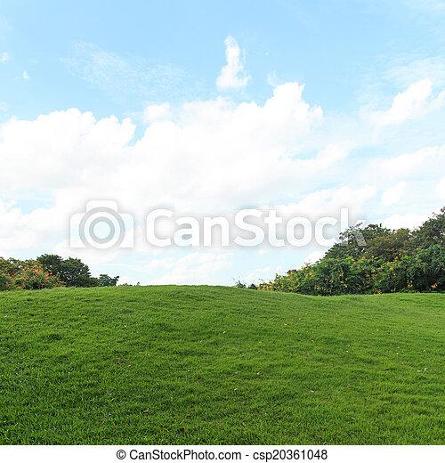 Grüner Rasen und Bäume im Park - csp20361048