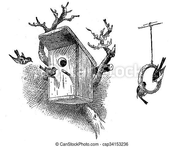 Grabación de casa de pájaros y anillo de comida - csp34153236