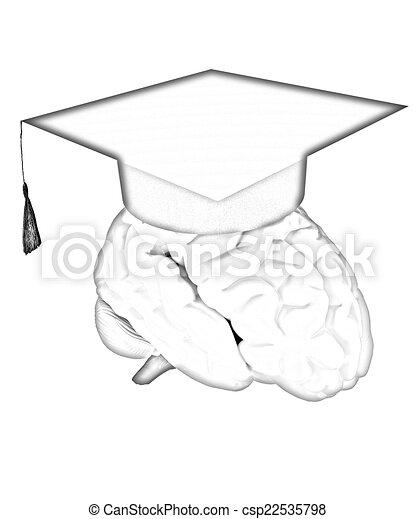graduation hat on brain - csp22535798