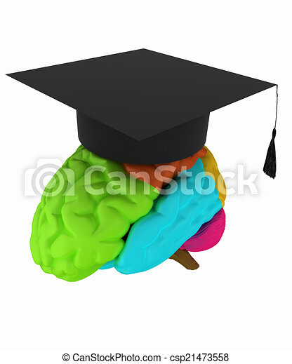 graduation hat on brain - csp21473558