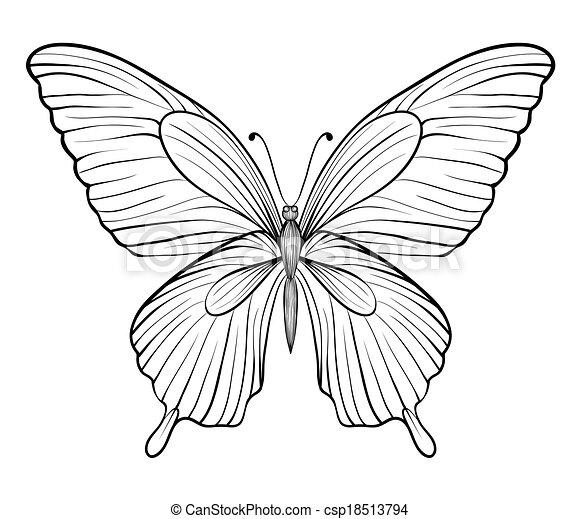 grafik, strokes., linien, freigestellt, eins, hand-drawn, schwarz, weißes, kontur, butterfly. - csp18513794