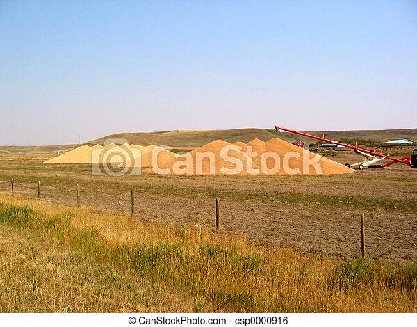 Grain Piles - csp0000916