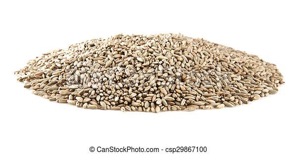 grain - csp29867100