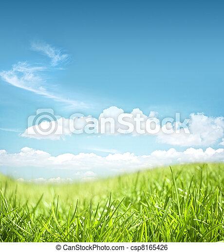 gramado, paisagem - csp8165426