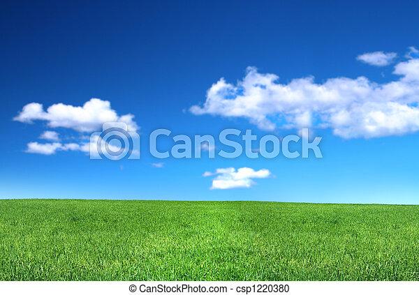 gramado, vista, calmo - csp1220380