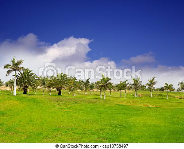 Gran Canaria Meloneras golf green grass - csp10758497