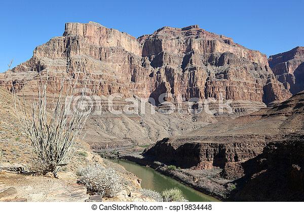 Grand Canyon and Colorado River - csp19834448