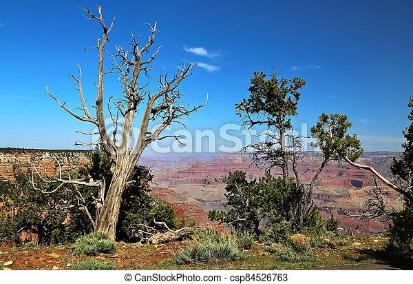 Grand Canyon in Arizona - csp84526763