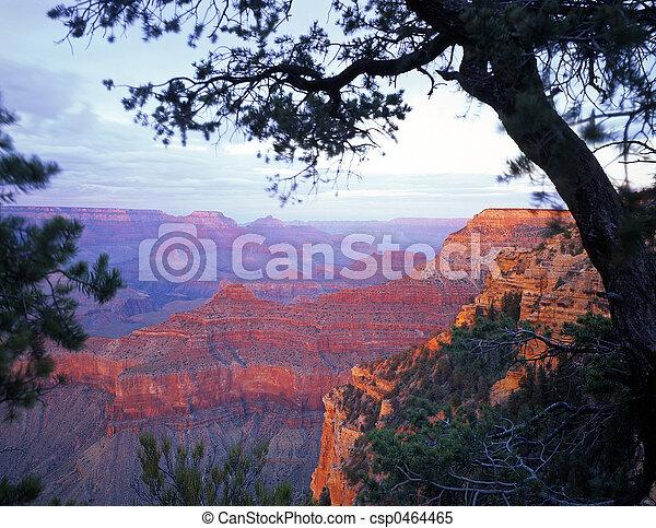 Grand Canyon South Rim - csp0464465