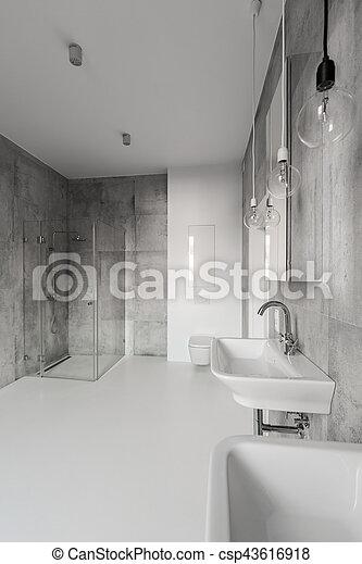 Grand, salle bains, moderne, gris. Salle bains, porte, sinks., grand ...