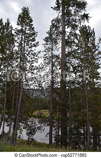 Grand Teton National Park in Wyoming - csp52771883