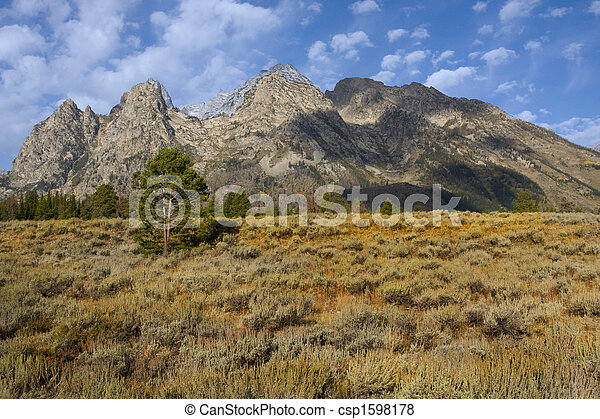 Grand Teton National Park - csp1598178