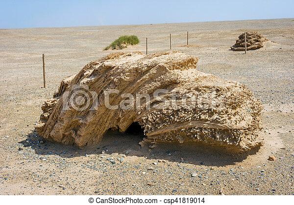 Gran detalle de la pared china, desierto Gobi - csp41819014
