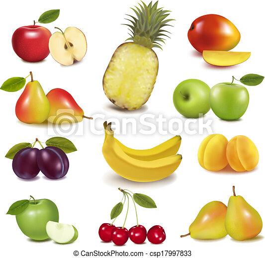 grande, diferente, grupo, fruit., vector. - csp17997833