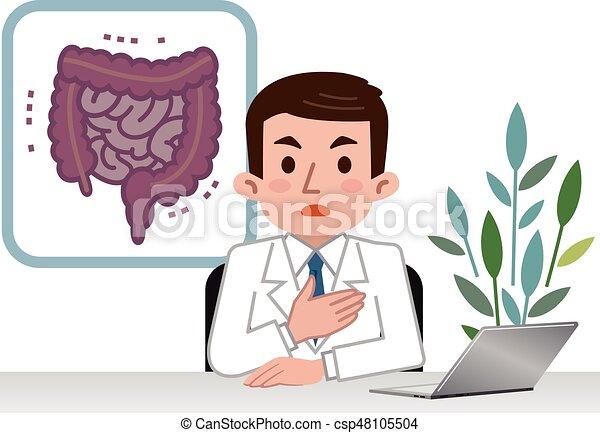 grande, explicando, intestino delgado, doutor - csp48105504