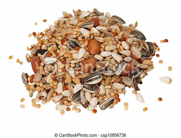 Mezcla de semillas para grandes periquitos - csp10856736