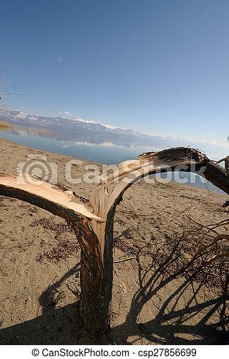grande, prespa, lago, macedonia - csp27856699