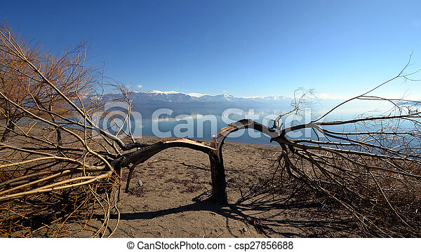 grande, prespa, lago, macedonia - csp27856688