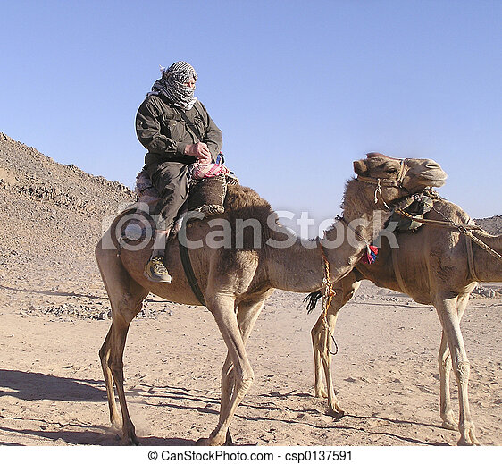 Grandfather tourist on camel 4, Sahara, Egypt, Africa - csp0137591